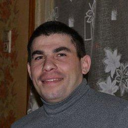 Николай, 32 года, Саратов