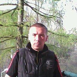 Дима, 38 лет, Волгоград