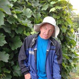 Саша, 54 года, Тольятти